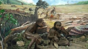 Koleksi di Museum Sangiran