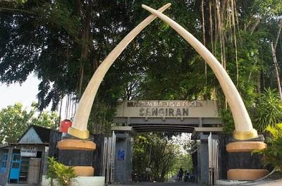 Sejarah Museum Sangiran Solo Jawa Tengah Terlengkap