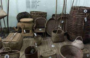 Koleksi Museum Etnobotani Bogor