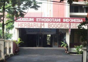 Sejarah Museum Etnobotani Bogor