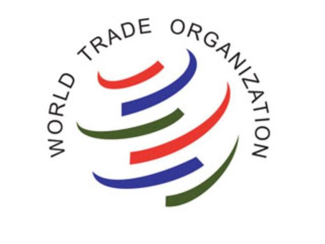organisasi regional dan global