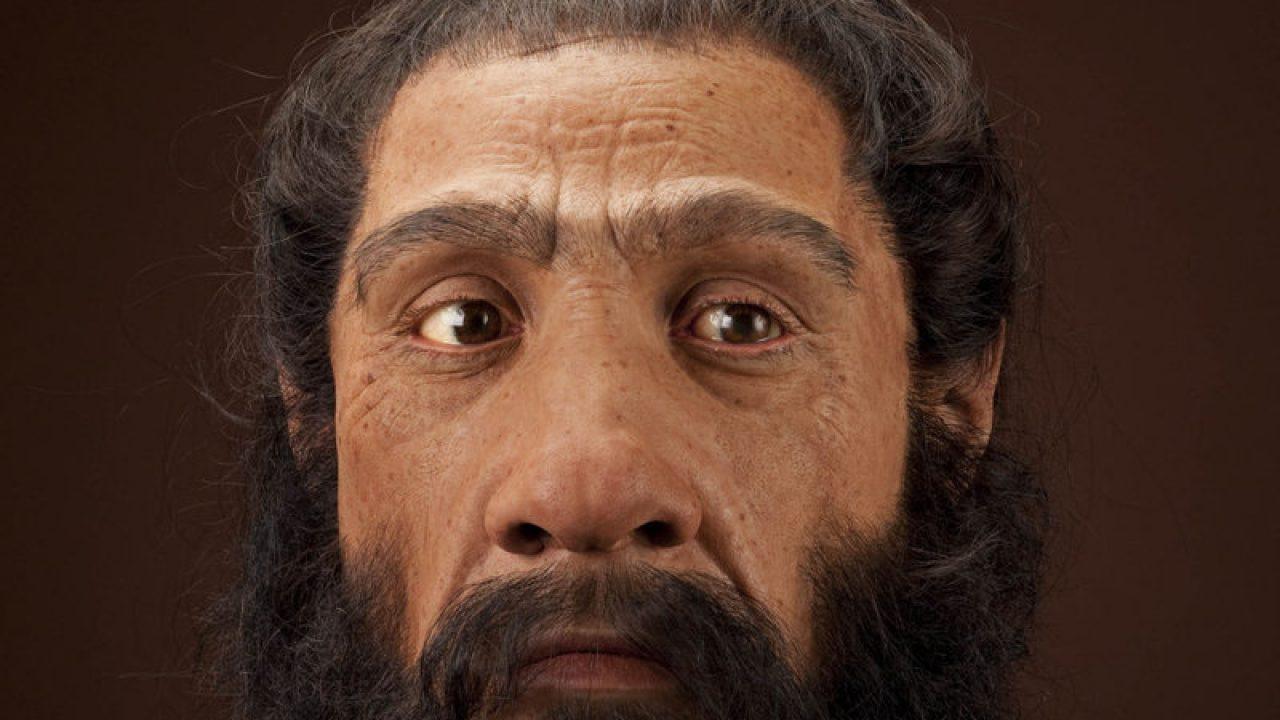 4 Manusia Purba Di Eropa Dan Ciri Cirinya Sejarah Lengkap