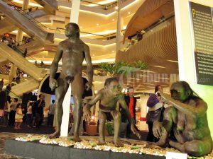 Koleksi Museum Sangiran